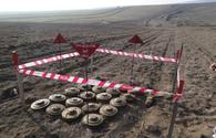 Over 450 unexploded ordnances neutralized in October