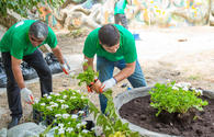 """Volunteers help clean up children playground in Baku <span class=""""color_red"""">PHOTO</span>"""