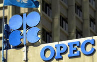 OPEC oil price up