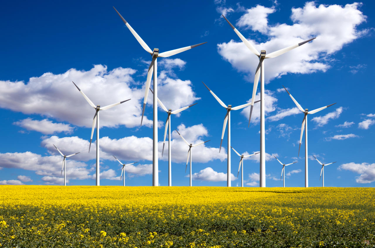 small wind energy alternative energy solutions essay Wind energy essay essay on wind energy to think about using alternative energy wind power would be our effect of diffuser on the performance of a small wind.