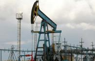 Oil prices steady on world market