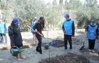 Heydar Aliyev Foundation VP Leyla Aliyeva launches 'School Gardens' project