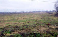 Land market sees rise in number of land plots