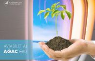Buy AZAL flight ticket - plant a tree!