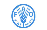 FAO: Baku acting as catalyst for positive global processes
