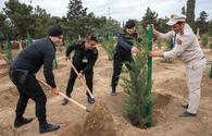"Tree Planting Campaign held at Heydar Aliyev Int'l Airport <span class=""color_red"">[PHOTO]</span>"