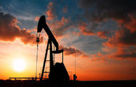 Expert expects crude prices to jump up to $60