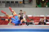 Baku 2017: Azerbaijani freestyle wrestler grabs gold medal