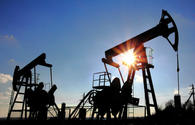 Crude prices fall due to rise in U.S. drilling rigs