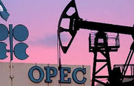 OPEC prices up