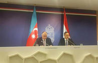 "Azerbaijan, Hungary identify promising areas of cooperation <span class=""color_red"">[PHOTO]</span>"