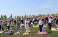 "Baku hosts Yoga festival <span class=""color_red"">[PHOTO]</span>"