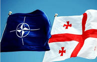 Georgia has little chance to join NATO in short term: expert