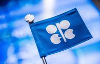 OPEC + monitoring committee to meet on August 21