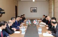 "Azerbaijan, Japan eye ways of expanding bilateral ties <span class=""color_red"">[PHOTO]</span>"