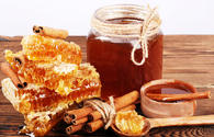 Honey processing plant to be created in Gakh region