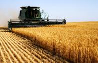 Fund for agricultural insurance to appear in Azerbaijan