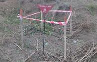 "Unexploded shells discovered in Fuzuli region <span class=""color_red"">[PHOTO]</span>"
