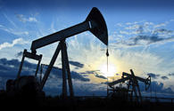 Crude prices show different tendency