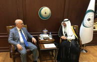 "OIC says always supports Azerbaijan's fair position on Karabakh conflict <span class=""color_red"">[PHOTO]</span>"