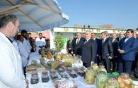 """Nakhchivan hosts Family Farm Products festival <span class=""""color_red"""">[PHOTO]</span>"""