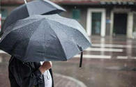 Ecologists predict rainy weather