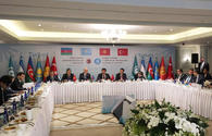 Azerbaijan urges Turkic-speaking countries to up mutual investment
