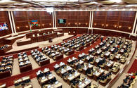 Meeting of Health Committee of Parliament held in Baku