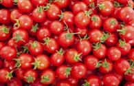 Azerbaijan main tomato supplier for Russia last year