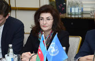 "&quot;Baku Principles&quot; to be developed as part of UN Sustainable Development Goals <span class=""color_red"">[PHOTO]</span>"