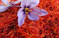Iran hands its saffron market to Afghanistan due to export restrictions