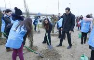 """Leyla Aliyeva attends tree-planting event under Justice for Khojaly campaign <span class=""""color_red"""">[PHOTO]</span>"""