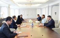 First VP Mehriban Aliyeva meets with Iranian VP for Women and Family Affairs