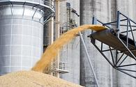 Russia's grain export to China first time above 1 mln tonnes