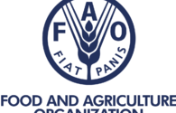 FAO to allocate funds for implementation of new projects in Azerbaijan