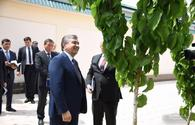 Uzbek scientist impresses Mirziyoyev with new high-yield mulberry cultivar