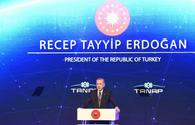TANAP is indicator of trust between Azerbaijan, Turkey - Erdogan