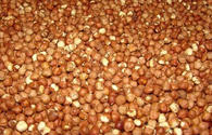 Azerbaijan eyes to increase hazelnut exports to Europe