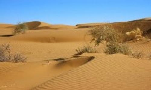 Image result for Karakum Desert