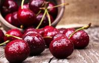 Uzbekistan intends to export 20,000 tons of sweet cherry to China