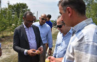 "U.S. charge d'affaires and USAID mission director meet with USAID beneficiaries in Guba <span class=""color_red"">[PHOTO]</span>"