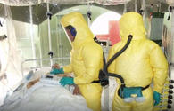 Kyrgyzstan establishes emergency operations center to eliminate anthrax