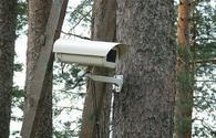 Cameras will be installed in forests