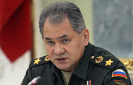 IS defeated in Syria with Russia's support - Sergey Shoigu