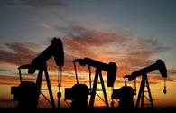 SOCAR in talks to develop oilfield in Russia