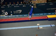 Azerbaijani gymnast successfully performs in Qatar