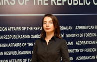 Foreign Ministry: Azerbaijan expects Russia's official representative to increase efforts to return Dilgam Asgarov
