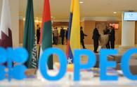 OPEC predicts a decrease in oil supplies from non-OPEC countries