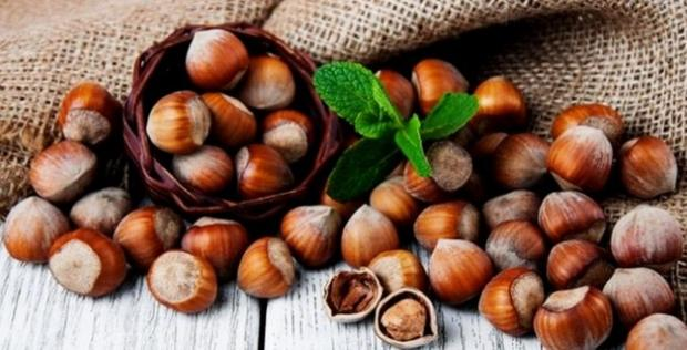 Revenues from hazelnut exports increase dramatically