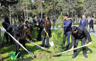 "Heydar Aliyev Foundation VP Leyla Aliyeva takes part in tree planting event under ""Justice for Khojaly"" campaign <span class=""color_red"">[PHOTO]</span>"